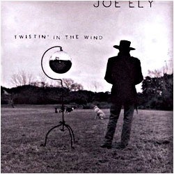 Cover image of Twistin' In The Wind
