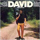 Cover image of David
