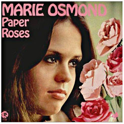 Cover image of Paper Roses