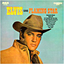 Cover image of Flaming Star