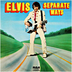 Cover image of Separate Ways