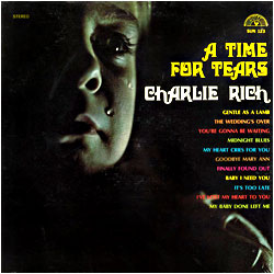 Cover image of A Time For Tears