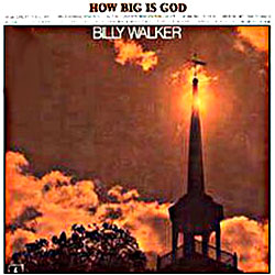Cover image of How Big Is God
