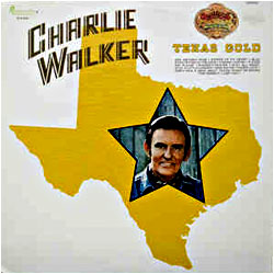 Cover image of Texas Gold