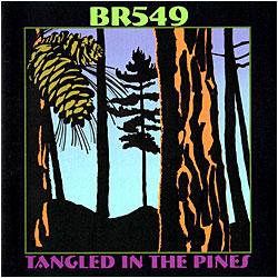 Cover image of Tangled In The Pines