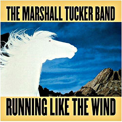 Cover image of Running Like The Wind