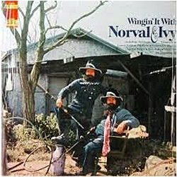 Cover image of Wingin' It With Norval And Ivy