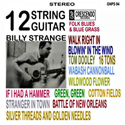 Cover image of 12 String Guitar