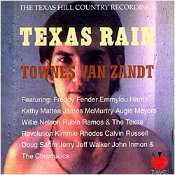 Cover image of Texas Rain