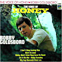 Cover image of The Voice Of Honey