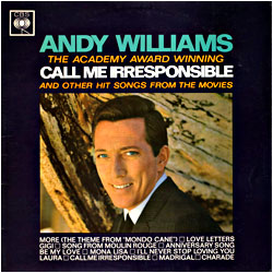 Cover image of Call Me Irresponsible