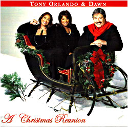 Cover image of A Christmas Reunion