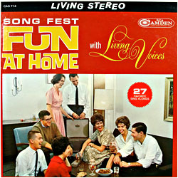 Cover image of Fun At Home