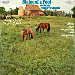 Cover image of Statue Of A Fool