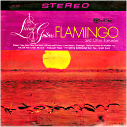 Cover image of Flamingo